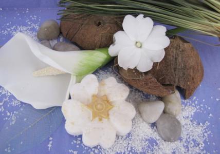 Shampoo Solido Isla De Flores. Como Hacer en la casa.
