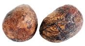 manteca de karité orgánica Nilotica