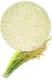Cera de arroz Bogota Colombia