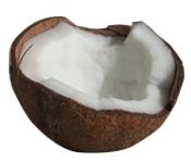 Dulsura de coco tensioactivo natural Colombia