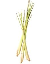Aceite esencial de hierba de limonaria Organica Bogota Colombia