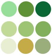 oxydo verde
