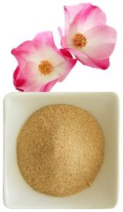 Polvo aromático de rosa mosqueta con aroma de rosa mosqueta